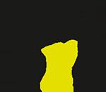 Vizpro_logo copy